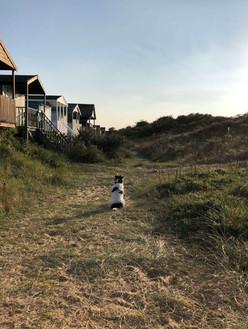 Perce guarding huts.jpeg
