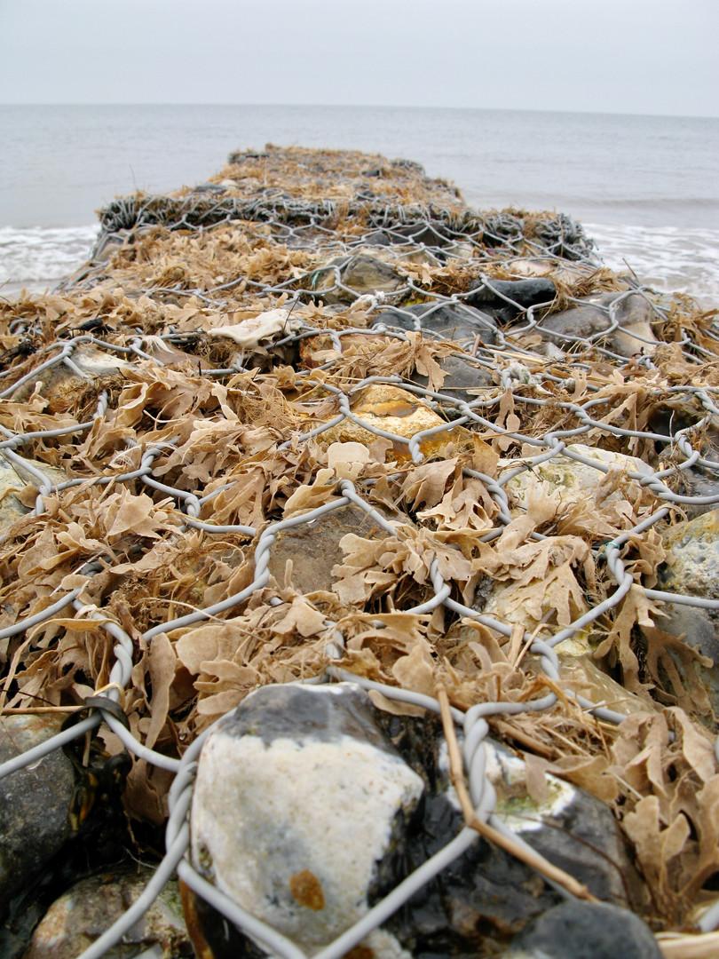 Beach groyne Old Hunstanton beach