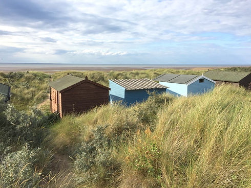 COMP hut roofs.jpeg