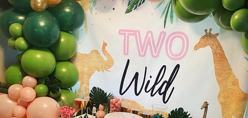 Two Wild Birthday Party