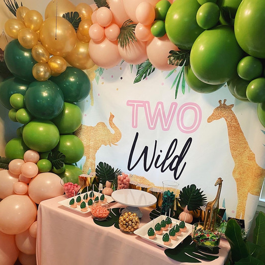 Two Wild Birthday Party
