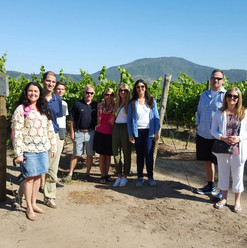 Learning at the vineyards