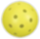 pickleball-ball-img.png