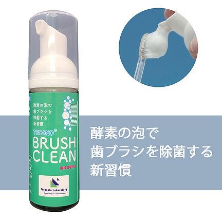 brushclean_hp1.jpg