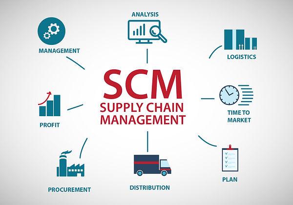 Managemnt, analysis, logistics, time to market, plan, distribution, procurement, profit