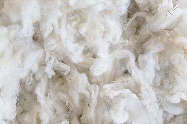 woola-leftover-waste-wool-packaging.jpg