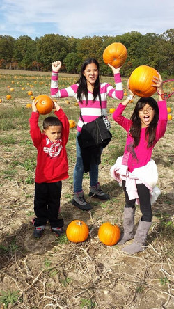 Cheer for your pumpkin finds family