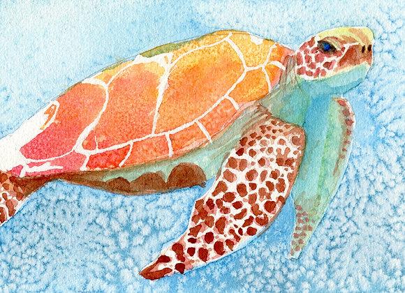 Sea Turtle, 6x9 limited print