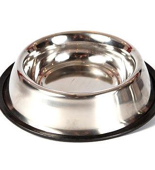 Doggy Wasser-Schüssel