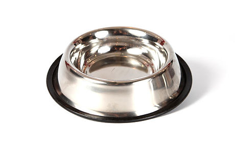 Doggy Water Bowl at Friends Forever Pet Food Store