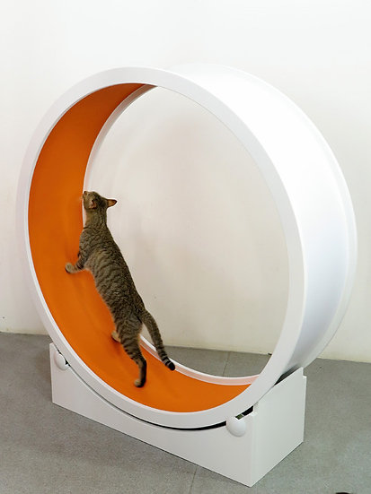 Catswall Design Catwheel II Cat Exercise Wheel