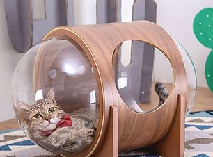 Cat in MyZoo Cat Space Pod Bed