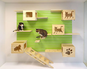 Catswall Design Cat Climbing Wall in Green