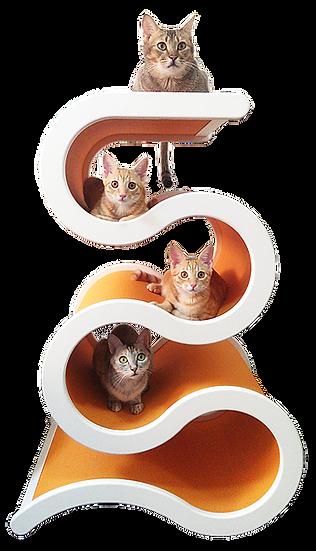 Catswall Design Large Curvynest