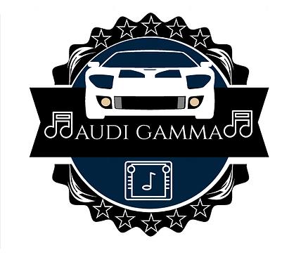 Audi Gamma Radio Code