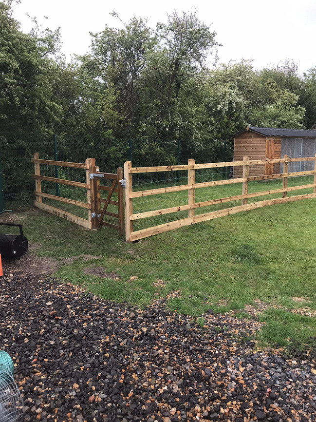 Dog pen in Epping