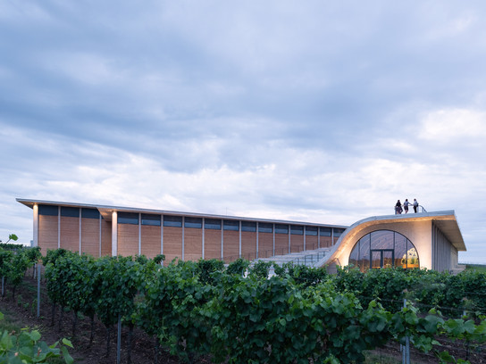 This Winery's Got Curves