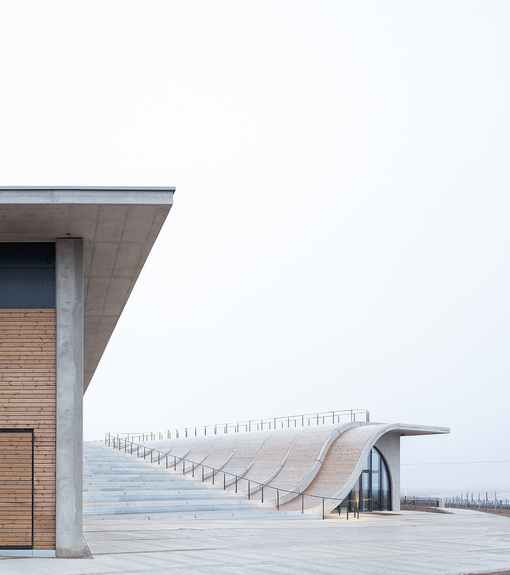 Curved staircase and amphitheater rooftop at Lahofer Winery, wood-clad and concrete building