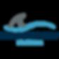 khoya surf camp est le premier camp à vous accueillir pour la pratique du surf, free surf et surf school sur l'île d'oléron