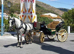 Mijas Village horses and carriages
