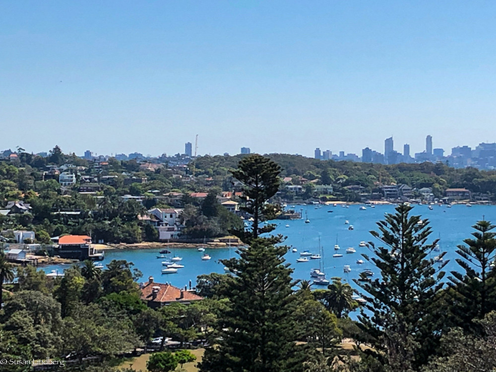 view of Watson's Bay, Sydney, Australia with city scape background