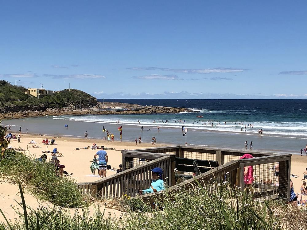 freshwater beach, freshwater, australia, beach, ocean, swimming, surf, surfing, rocky shore, vacation, travel