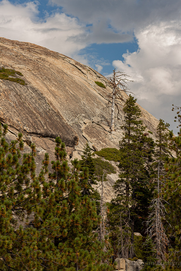 Sentinel Dome, Yosemite, California.  hiking, trails, mountains, wilderness, nature, vacation, travel, photography