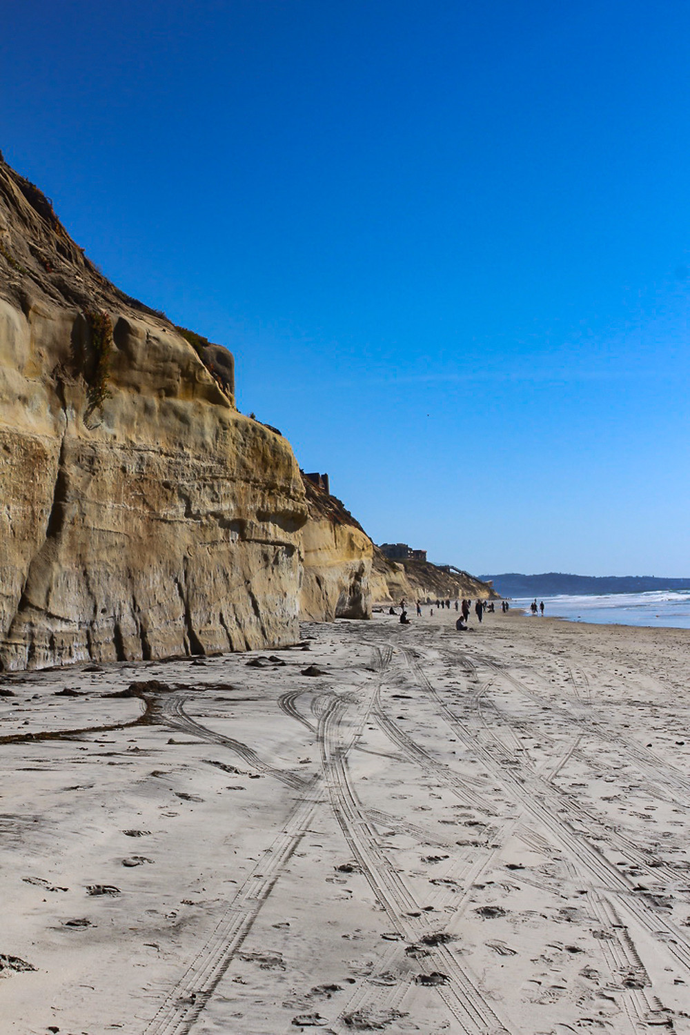 cliffside view of part of Torrey Pines State Beach, Torrey Pines State Natural Reserve, La Jolla, California