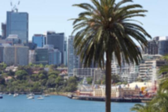 Luna Park at Darling Harbor with city background, Sydney, Australia