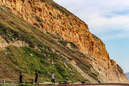 Cliff at Torrey Pines State Natural Reserve, La Jolla, CA with people walking
