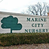 Marine City Nursery Logo.jpg