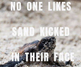 No One likes sand Kicked - smaller versi