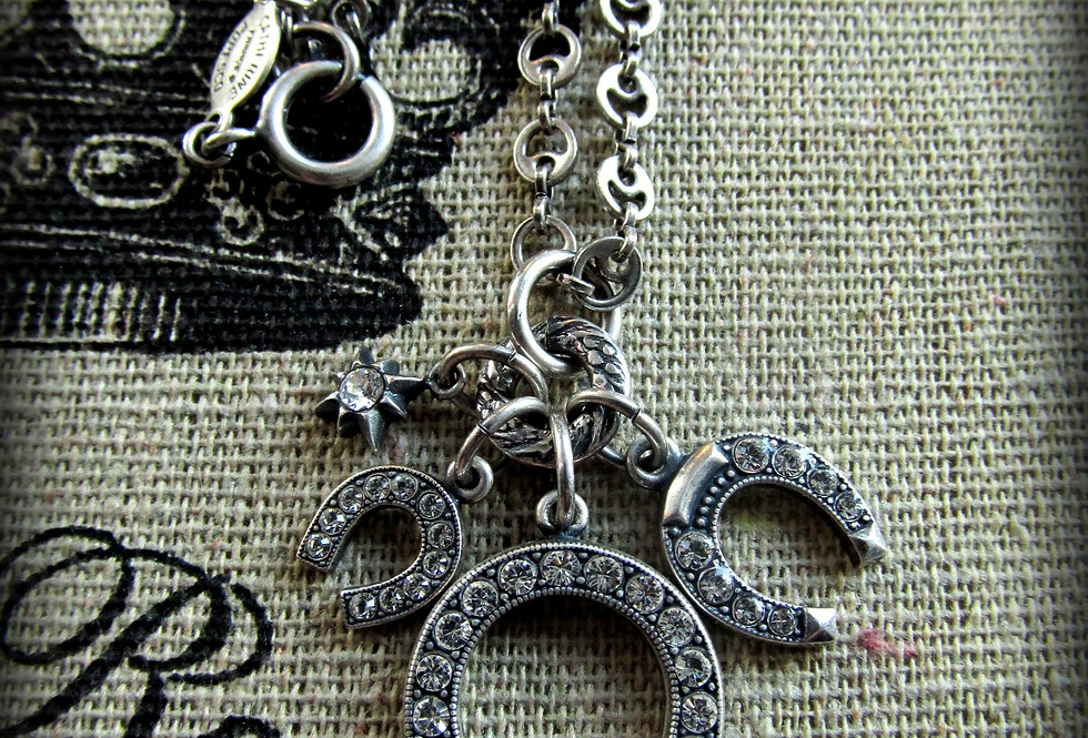 Lucky in Paris Horse Shoe Necklace