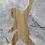Thumbnail: Peace Out Sasquatch