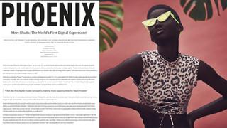 Pheonix-1-7-19-min.jpg
