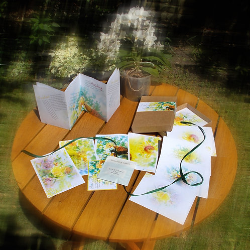 Little box of Stories in Bloom