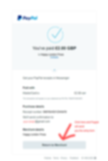 paypal view2.png
