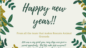 Happy new year from the team!
