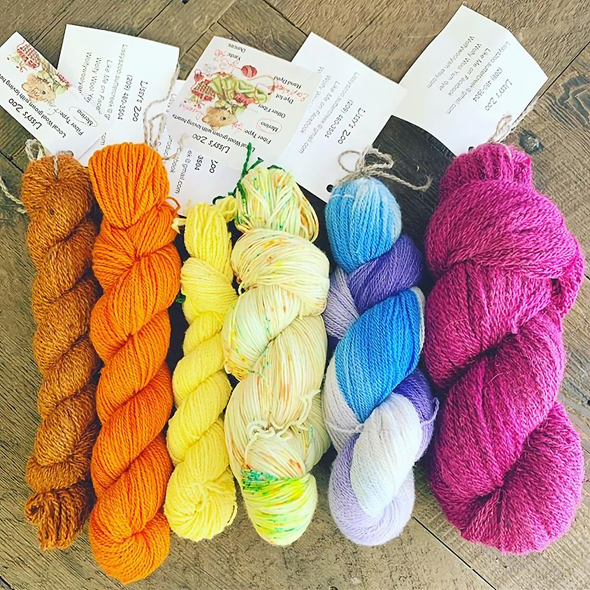 Beginning Knitting with Lissy's Zoo
