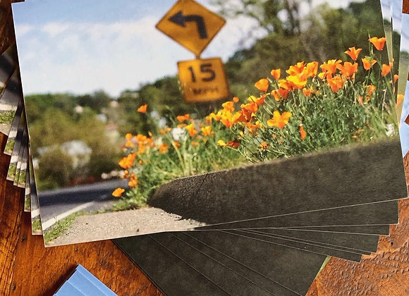 Post Card Delivery: Poppy Curb