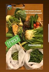 סל ירקות אורגני