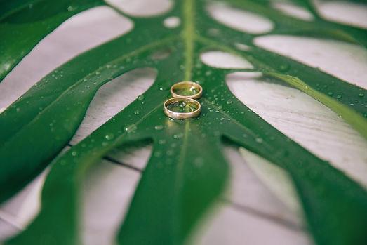 Комплексная организация свадьбы - Выездная регистрация по Уфе и Башкортостане - оформление свадьбы. тропическая свадьба. свадьба в тропическом стиле