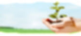 思健心理諮詢中心 - 註冊臨床心理學家 Wellness Psychological Consultancy Services -Registered Clinical Pschologist