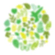 logo-PRIMERO-EL-PLANETA-icon.png