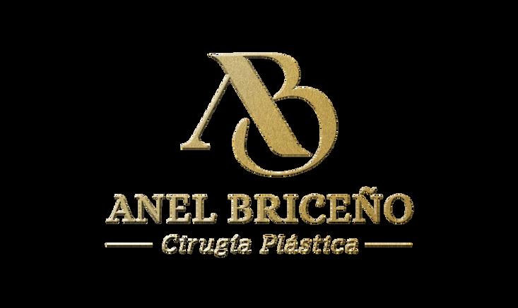 Logo Anel Briceno