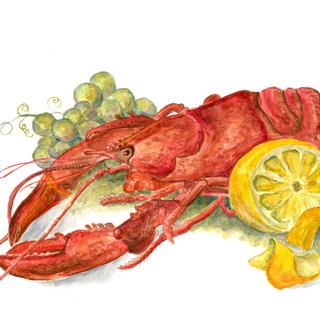 lobster V500 scan no adj.psd-2.jpg