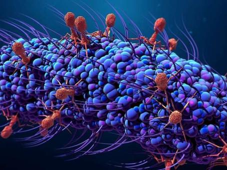 Postbiotics-Do you need them?