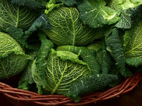 Your gut bugs love cabbage.