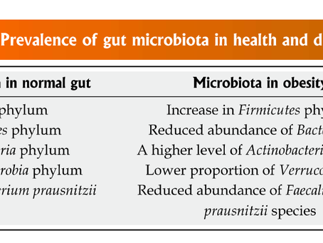 Know your Gut up close and personal-Part 2-Firmicutes