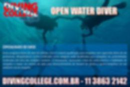 Curso de mergulho em são paulo